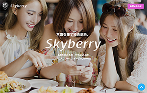 Skyberry Global Website